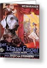Weimaraner Art Canvas Print - Der Blaue Engel Movie Poster Greeting Card