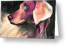 Weimaraner Dog Painting Greeting Card