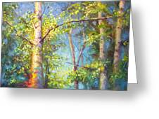 Welcome Home - Birch And Aspen Trees Greeting Card