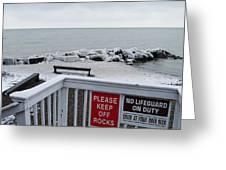 Welcome Polar Bear Club Greeting Card