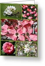 Welcome Spring Collage Greeting Card