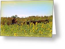 Welcome To Gorman Farm In Evandale Ohio Greeting Card