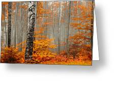 Welcome To Orange Forest Greeting Card