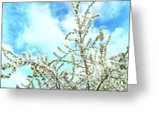 Welcome Vintage Spring Greeting Card