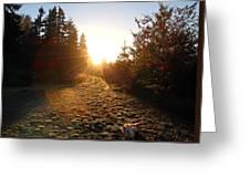 Welcoming Dawn Greeting Card