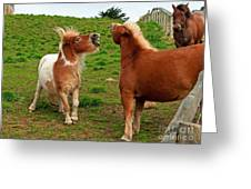 We're Just Horsing Around Greeting Card