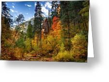 West Fork Wonders  Greeting Card by Saija  Lehtonen