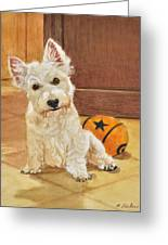 West Highland Terrier Puppy Greeting Card