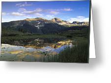 West Needle Mountains Reflected In  Pond Greeting Card
