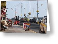West Pier Howth Greeting Card