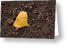 West Texas Autumn Greeting Card