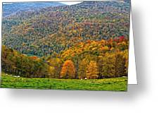 West Virginia High Greeting Card