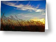 West Wind Greeting Card