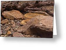 Western Diamondback Rattlesnake Greeting Card