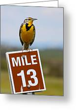 Western Meadowlark On The Mile 13 Sign Greeting Card