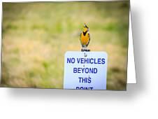 Western Meadowlark Singing Greeting Card