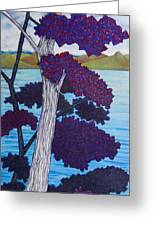 Western Skink On Tree Next To Lake Greeting Card