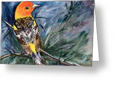 Western Tanager At Mt. Falcon Park Greeting Card