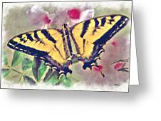 Western Tiger Swallowtail Papilio On Flower Greeting Card by Robert Jensen