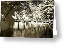 Westhamption Lake -2 Greeting Card