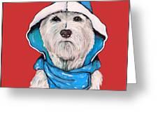 Westie In A Blue Slicker Greeting Card