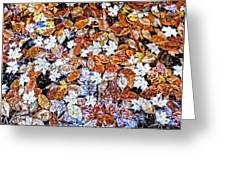 Wet Autumn Leaves Greeting Card