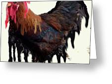 Wet Rooster Greeting Card