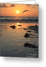 Wet Sunset Greeting Card