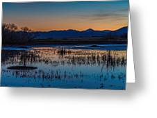 Wetland Twilight Greeting Card