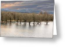 Wetlands At Columbia River Gorge Greeting Card