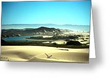 Wetlands In The Dunes Greeting Card