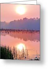 Wetlands Sunrise Greeting Card by JC Findley