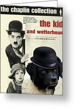 Wetterhoun-frisian Water Dog Art Canvas Print - The Kid Movie Poster Greeting Card