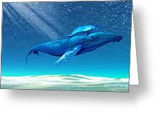 Whales Greeting Card by Corey Ford