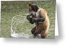 What A Show Little Bear Greeting Card