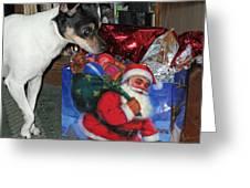 What Did Santa Bring Me Greeting Card