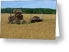 What The Hay Greeting Card