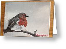 What Will The Robin Do Then Greeting Card