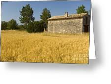 Wheat Field, France Greeting Card