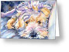 Wheaten Terrier Painting Greeting Card