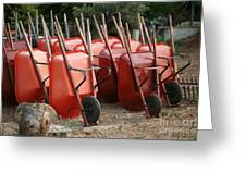 Wheelbarrows In Garden Greeting Card