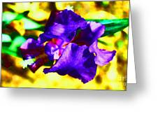 When Iris Eyes Are Smiling Greeting Card