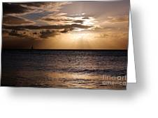 When Night Comes Greeting Card