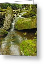 When Peace Like A River Greeting Card
