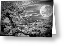 When The Moon Comes Over Da Mountain Greeting Card