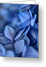 When You're Feeling Blue Greeting Card