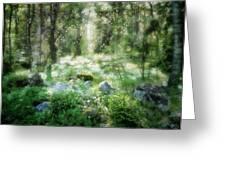 Where Fairies Dwell Greeting Card by Gun Legler
