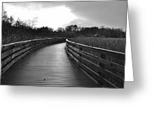 Where The Path Leads You Greeting Card