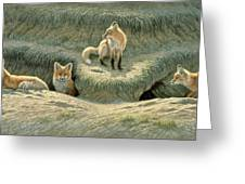 Where's Mom-fox Pups Greeting Card by Paul Krapf