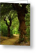 Wherever The Path May Lead Greeting Card